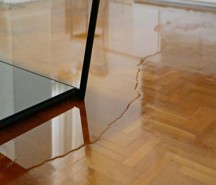 Close up of water on parquet floor